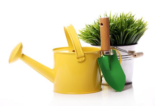 floressa-plantes-vivaces-potagers-vegetaux-aromatiques-arbustes-fleurs-massifs-saisonniers-jardinerie-horticulteur-pepinieriste-ambi-01